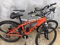 2 large adults mountain bikes