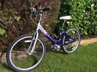 Ladies Raleigh mountain bike like new £29