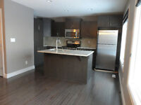 FIRST MONTH'S RENT FOR FREE!! BRAND NEW 3 BEDROOM 2.5 BATHS