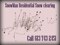 Snow Service by the Snowman