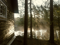 Cottage Cleaning and Odd Jobs