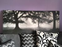 Large black & white forest trees canvas picture