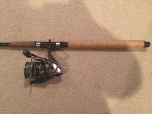 10 ft 2 piece spinning rapala delta rod and real