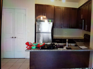 Used kitchen cabinets and granite