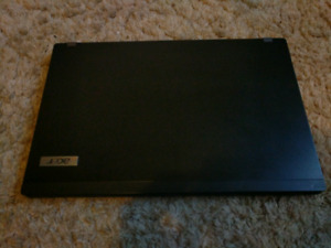 Acer travemate