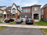 New 2 Bedroom Basement Apartment For Rent N/Ajax $1300 Dec 1st.