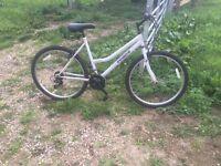 Ladies bike atb reflex bicycle
