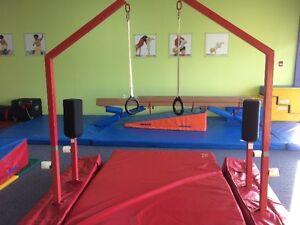 Gymnastics - Parallel Bar and Rings, High Bar, High Beam