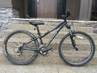 Specialized Rockhopper Mountain Bike with 15 inch frame