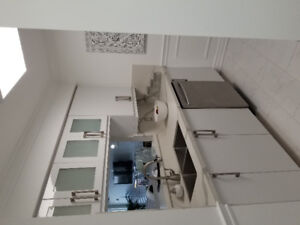 Completely renovated 1 bdrm plus den.. for rent