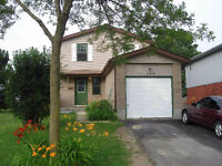 Great Family Home - E Guelph (Available Sept 1st)