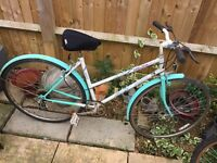 Ladies Mountain bike. Serviced, Free Lock/Lights/Delivery