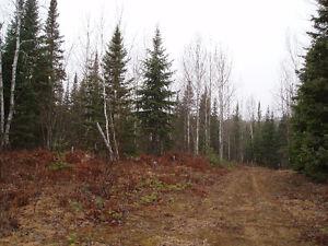 100 acres pour chasseurs ou amusement