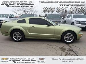 2006 Ford Mustang GT   - Low Mileage
