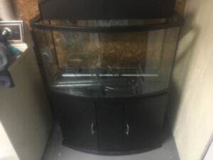 Fish tank with with filtration system and tank stand