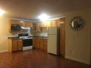 One bedroom apartment in paradise St. John's Newfoundland image 6