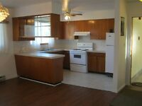 LARGE, CLEAN,BRIGHT 3BDRM-LASALLE