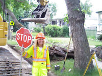 PROFESSIONAL FLAGGER for HIRE
