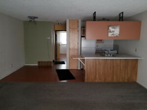 1 Bedroom condo for rent. Available immediately until March 31st