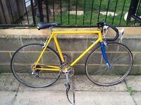 Vintage racing bike needs work