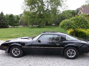 1979 Trans Am 4 speed Black on Gold Rare 1 of 1590 Documented.