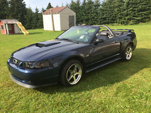 2002 Ford Mustang GT Convertible !! NEW PRICE!!