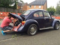 1975 classic beetle project
