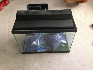 20 gallon Fish tanks with everything you need