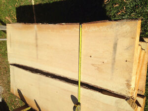 pine live edge pine slabs  lumber  kiln dried Kingston Kingston Area image 3