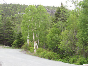 26-28 CROSS MEADOW, I ACRE BOREAL FOREST...CBS. St. John's Newfoundland image 2