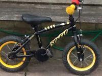 Apollo stinger kids bike