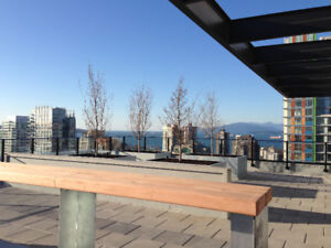 1 Bedroom Condo Yaletown Downtown Vancouver