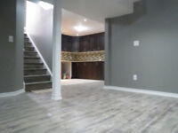 COMPLETE HOME RENOVATIONS BASEMENT FINISHING-647 262 4855