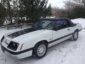 Fox Body 5.0 Litre HO White Mustang Convertible. Trades?