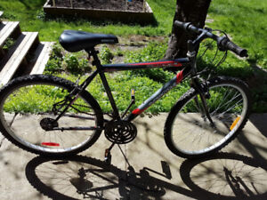 Free Bike! Needs new chain and gear cables