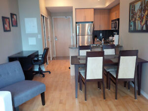 January: Downtown Furnished 2 Bed 2 Bath @ York Bremner - Union