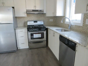 144 Osgoode -Brand New 3 Bedroom - Just Steps to U Ottawa Campus