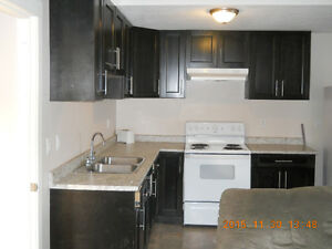 2 bed 1 bath newer unit for rent $950 month