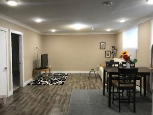 Amazing Suite  For Rental