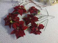 6 beautiful red poinsettias