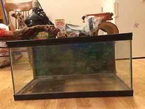 Gecko supplies and Aquarium Regina Regina Area image 1