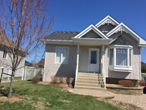 Nice basement apartment for long or short time to rent