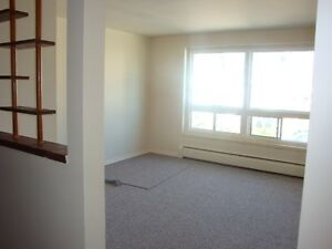 Clean 1 & 2 bedroom apts near downtown and bus routes