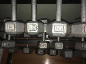 Gym  / poids libre