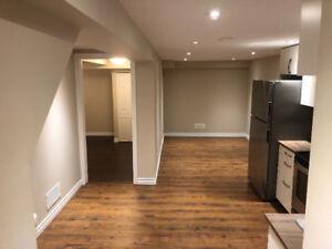 Beautiful 2 Level Basement Apartment