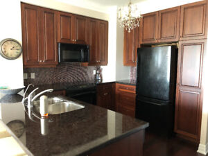 Used Kitchen Cabinets with appliances and granite counter top