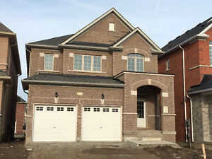 Brand New Fernbrook built home available for Rent in Georgetown