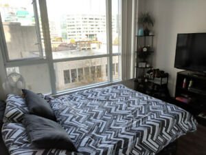 $1258 / 1 bedroom for rent starting May 1 (share apartment)