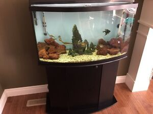 Complete 46 Gallon Bow Front Marineland aquarium with stand