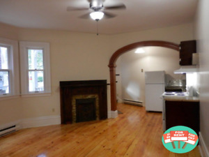 Unique 1Br apartment in the south end! - July 1st